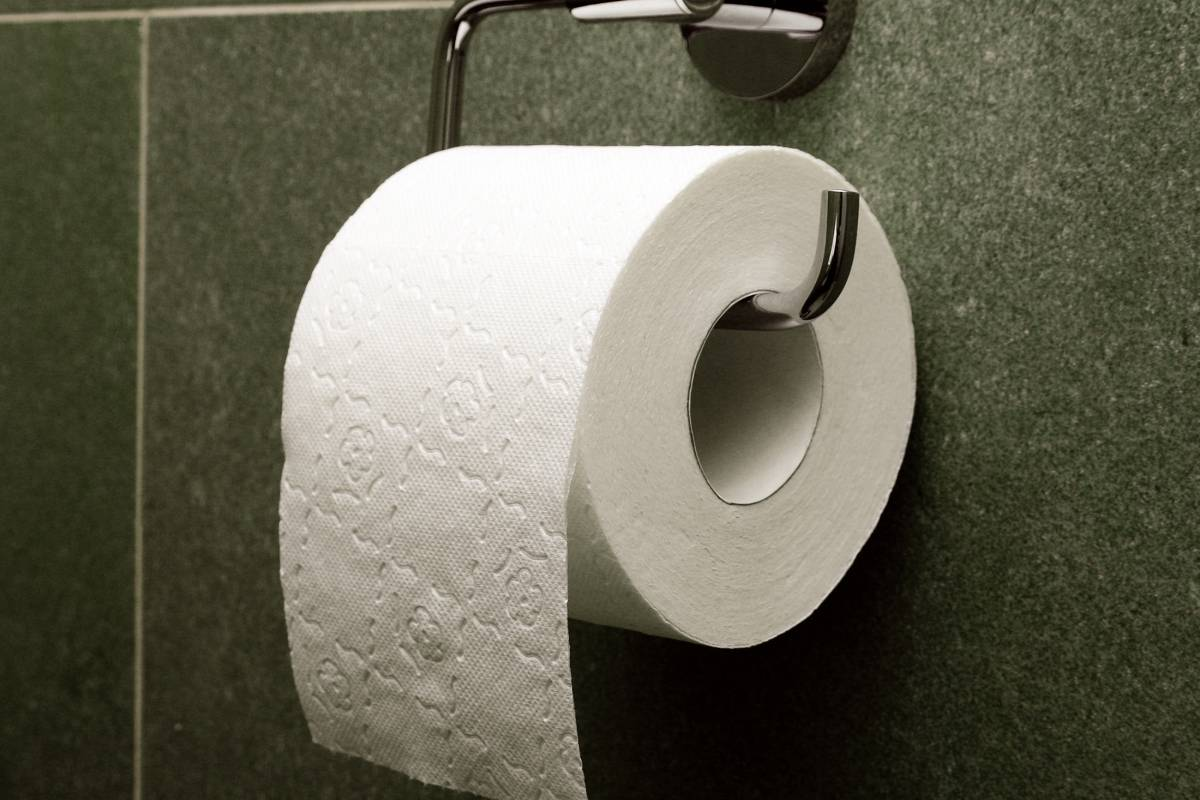Ученые назвали серьезную опасность туалетной бумаги