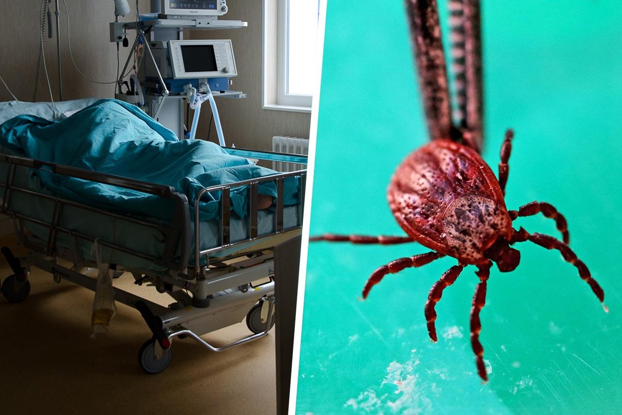 Что страшнее COVID-19? 10 смертельных вирусов