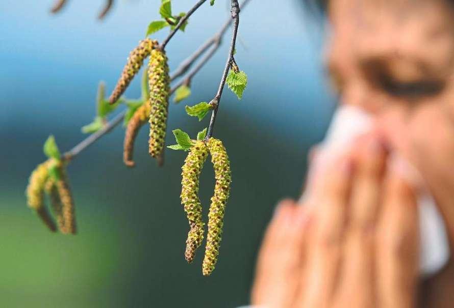 Как справиться с аллергией на цветение во время карантина