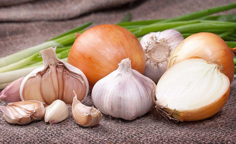 Вредно ли есть лук на голодный желудок?