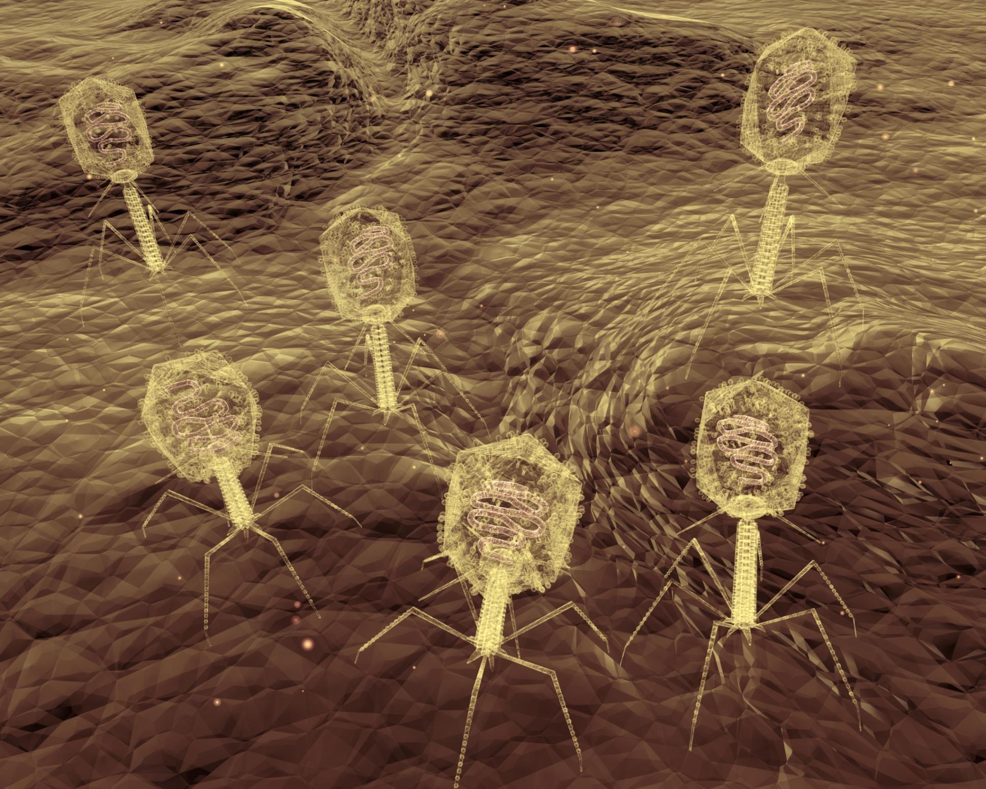 Стало известно о пробуждении древних вирусов