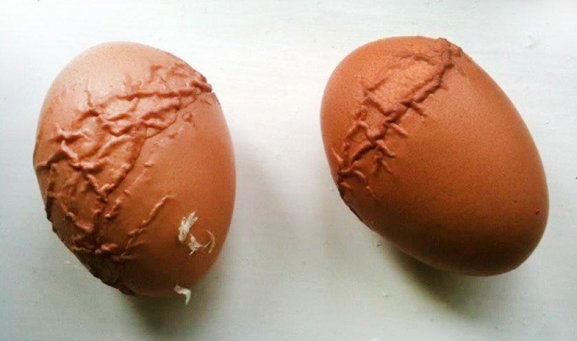 Безопасно ли есть куриные яйца с дефектами