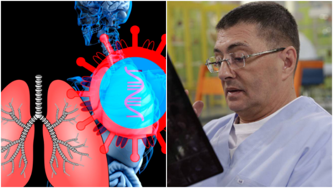 Врач раскрыл опасность стволовых клеток