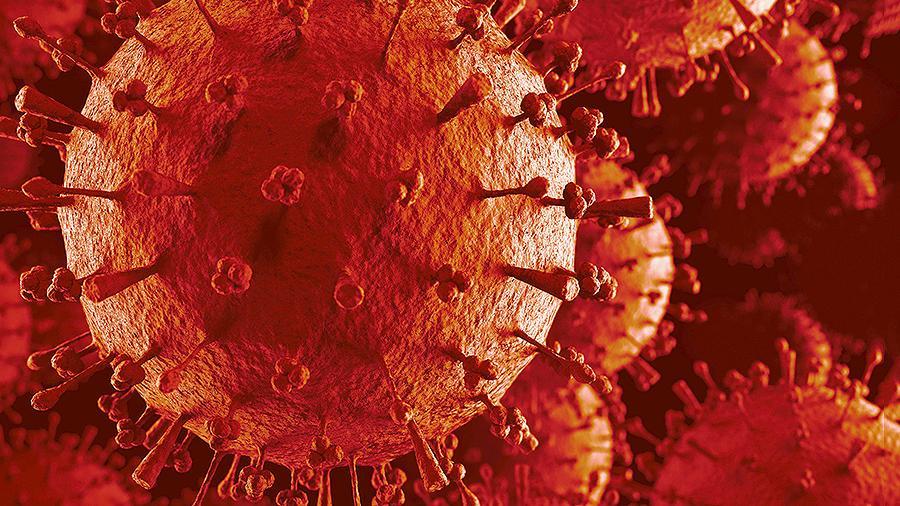 Вирус Даби — новая потенциальная угроза для населения Китая