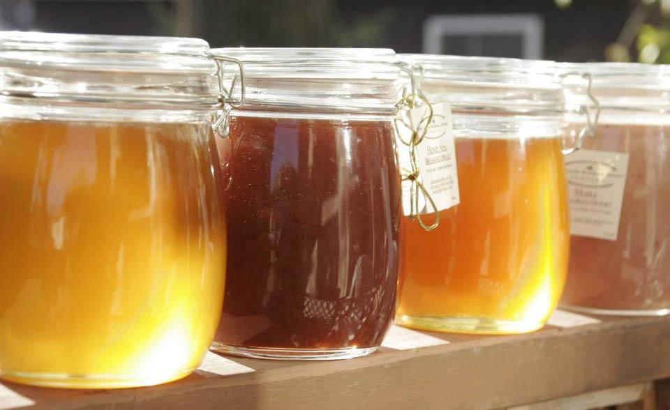 Когда мёд может быть вреден для организма?