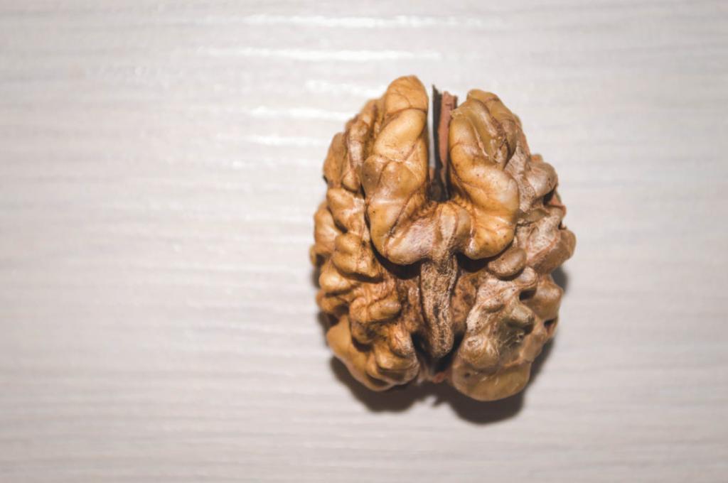 Почему грецкие орехи помогают работе мозга?